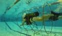 Découverte de la Plongée Sportive en Piscine avec le CoDep 31         -