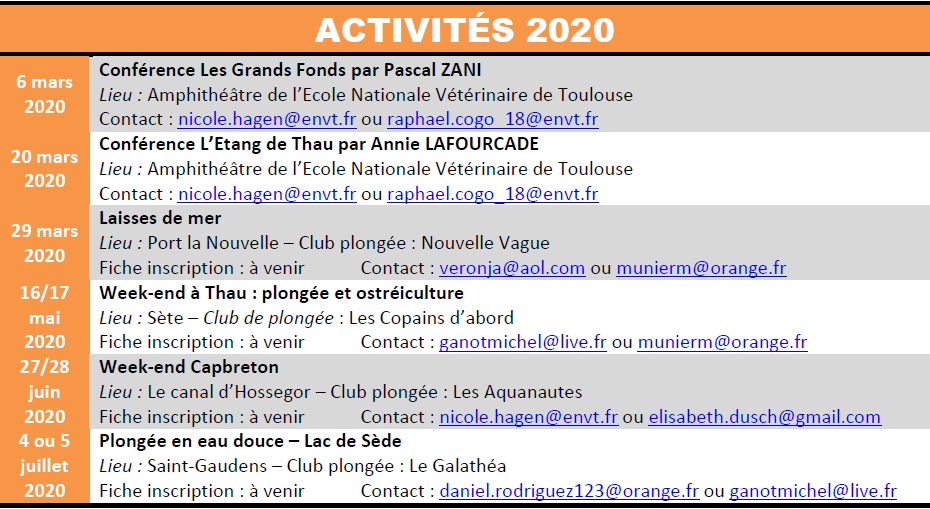 Click to enlarge image CDEBS31_Activits_2020.png