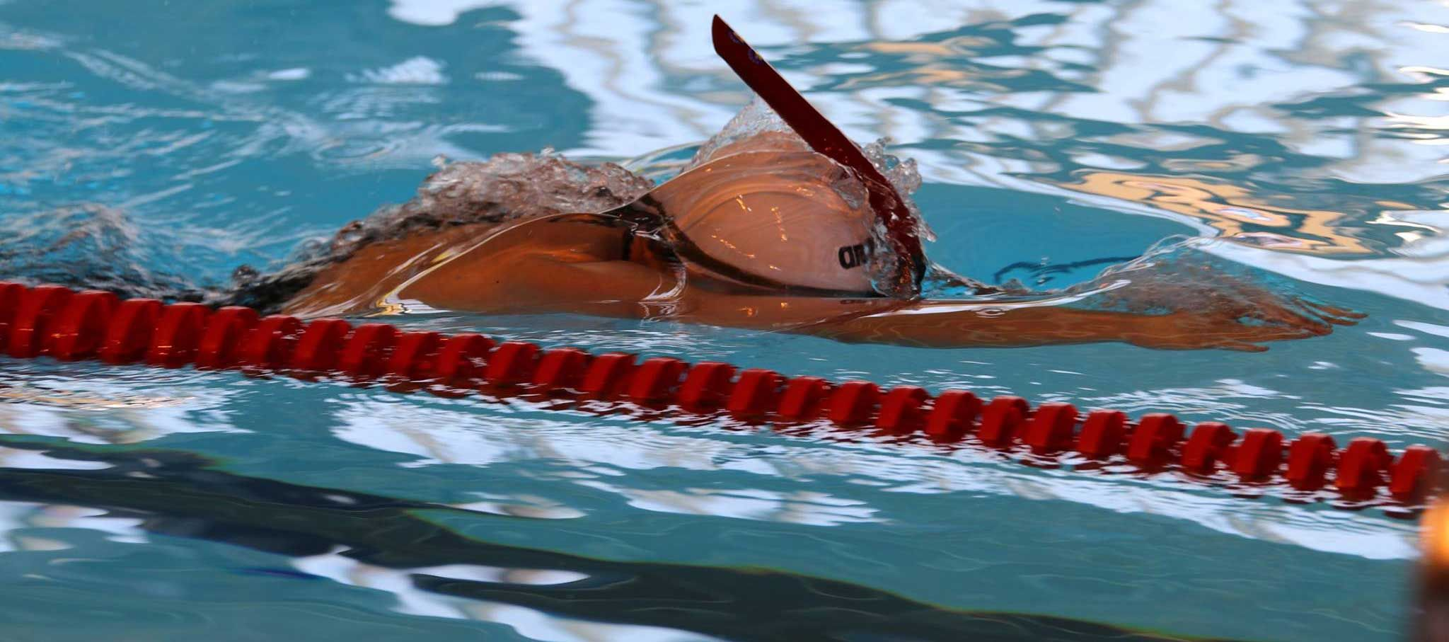 14th World Championship Finswimming
